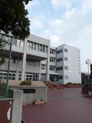 兵庫県立東灘高校の制服写真(No.66059)